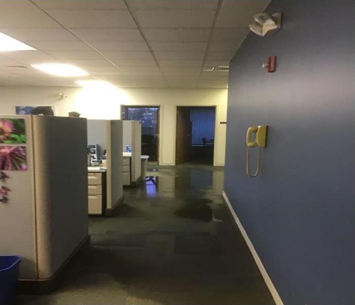 wet carpet in office building