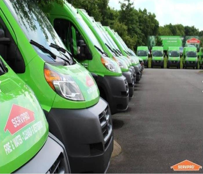 fleet of green SERVPRO vans
