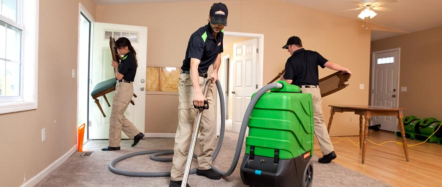 Roxbury, MA cleaning services